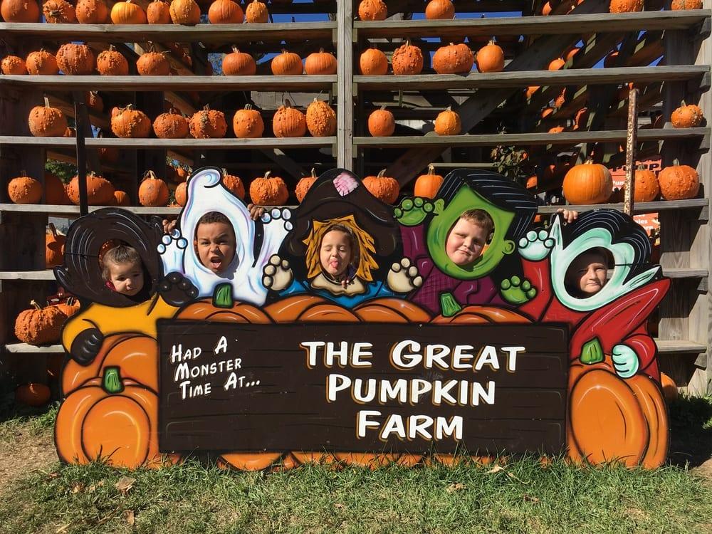 Pumpkins Photo Op