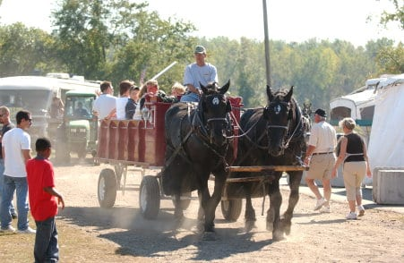 horse hayride