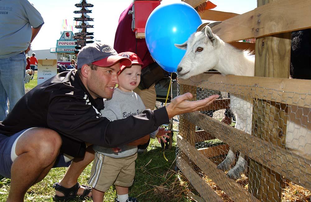petting zoo clarence ny