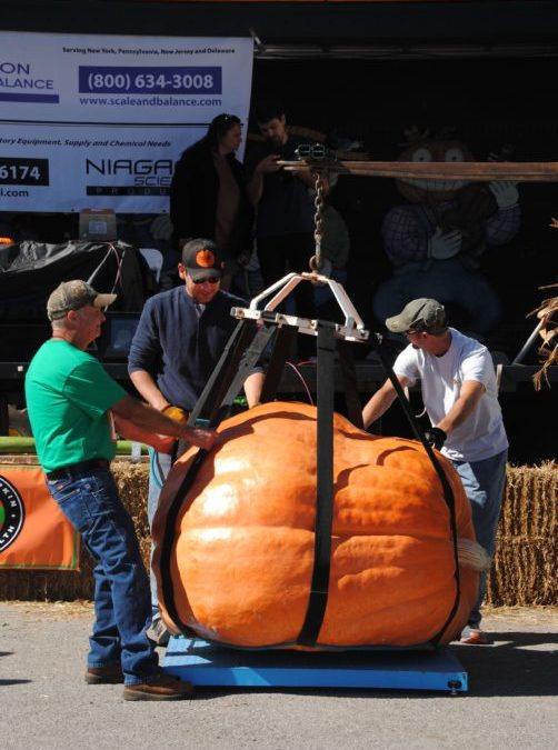 It's Time to Weigh the Pumpkins at the 24th Annual World Pumpkin Weigh-off at the Great Pumpkin Farm